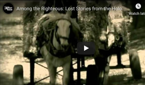 <p>This hour-long documentary explores what happened to Jews in Arab lands during the Holocaust.</p>