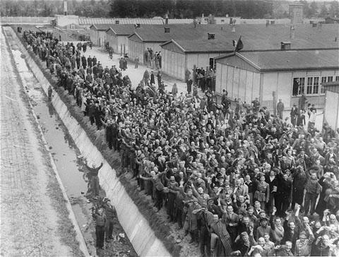 Foule de survivants acclamant les forces américaines à la suite de la libération du camp de concentration de Dachau par celles-ci. Dachau, Allemagne, après le 29 avril 1945.