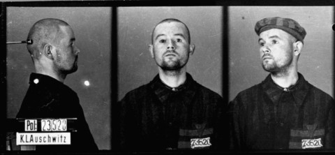 Identification pictures of a homosexual prisoner who arrived in Auschwitz on November 27, 1941, and was transferred to Mauthausen on January 25, 1942. Auschwitz, Poland.