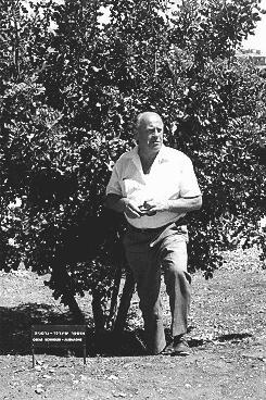 A Yad Vashem, l'institution nationale israélienne de commémoration de la Shoah, Oskar Schindler se tient à côté de l'arbre planté en hommage à ses efforts de sauvetage. Jérusalem, Israël, 1970.
