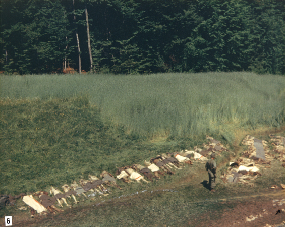 An American soldier stands among the corpses of prisoners exhumed from a mass grave in a ravine near Nammering. On April 19, 1945, a freight train with nearly 4,500 prisoners from Buchenwald pulled onto the railroad siding at Nammering. Hundreds of prisoners who had died on the train were buried in the mass grave along with the prisoners who were forced to carry the corpses to the ravine and were then shot. Germany, ca. May 6, 1945.