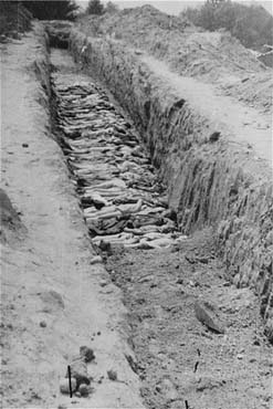 A mass grave at the Mauthausen concentration camp. Mauthasuen, Austria, May 10-15, 1945.
