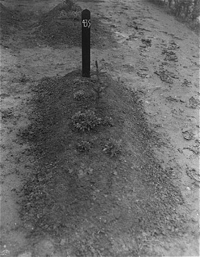 View of one of the mass graves at the Hadamar Institute. This photograph was taken by an American military photographer soon after the liberation. Germany, April 5, 1945.