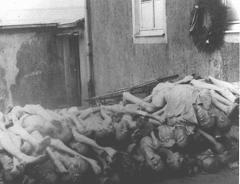 بوخن والڈ میں لاشوں کی بھٹی کے عقب میں لاشوں کا ڈھیر۔ جرمنی، مئی 1945 ۔