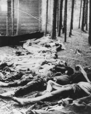Corpses found by US soldiers after the liberation of the Gunskirchen camp, a subcamp of the Mauthausen concentration camp. Austria, after May 5, 1945.