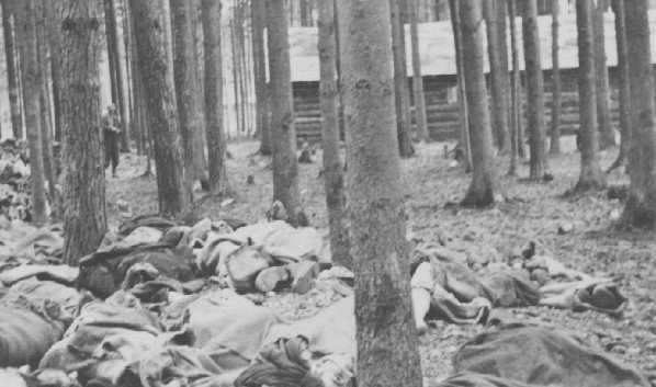 Corpses of victims of the Gunskirchen subcamp of the Mauthausen concentration camp. Austria, after May 5, 1945.