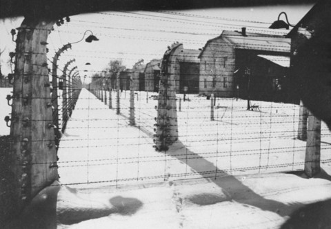 View of a section of the barbed-wire fence and barracks at Auschwitz at the time of the liberation of the camp. Auschwitz, Poland, January 1945.