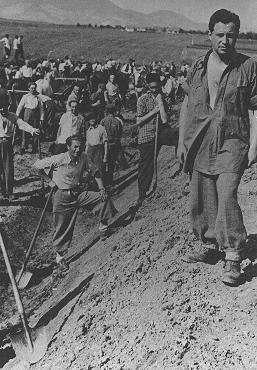 Prisioneros de un campo de trabajos forzados para judíos en el área de Transilvania ocupada por Hungría. Marosfelfalu, Transilvania, 1941.