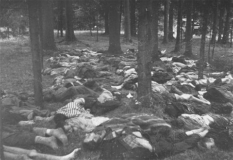 Corpses of prisoners killed in the Gunskirchen camp. The camp was liberated by US forces in early May 1945. Gunskirchen, Austria, photo taken between May 6 and May 15, 1945.