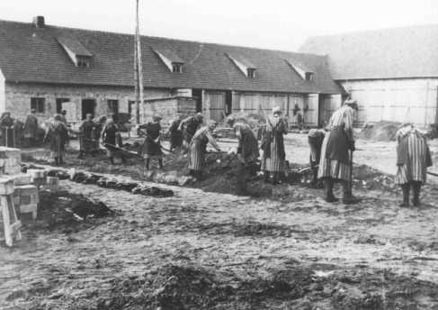 Inmates at forced labor in the Ravensbrück concentration camp. Germany, between 1940 and 1942.