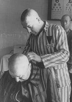 Shaving an inmate at the Sachsenhausen concentration camp. Germany, 1942.