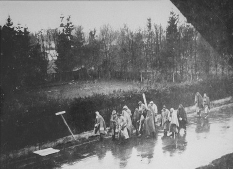 Prisoners from the Dachau concentration camp on a death march south toward Wolfratshausen. Germany, between April 26 and 29, 1945.