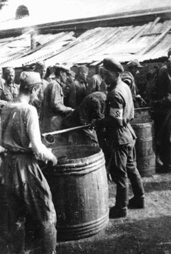 Soviet prisoners of war receiving their meager rations. More than three million Soviet prisoners of war died in German custody, mostly from malnutrition and exposure. Rovno, Poland, 1941.