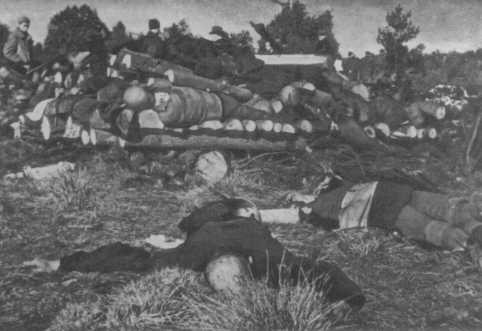 Corpses of inmates from Klooga concentration camp stacked for burning. Soviet troops discovered the bodies when they liberated the camp. Estonia, September 1944.