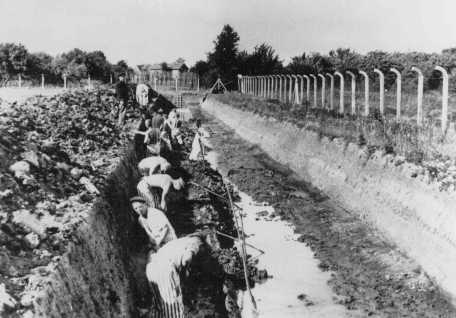 Prisoners at forced labor build the Dove-Elbe canal. Neuengamme concentration camp, Germany, 1941-1942.