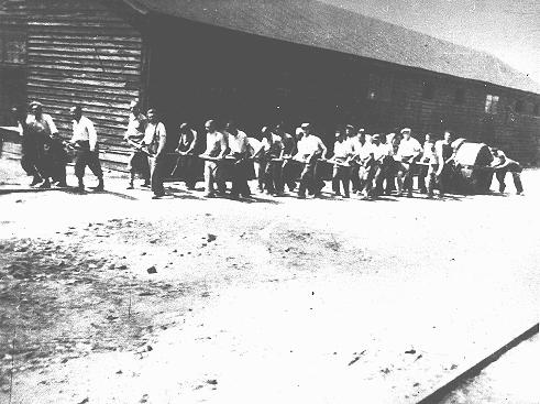 Jews at forced labor in a military camp in Sarajevo. Yugoslavia, after March 1941.
