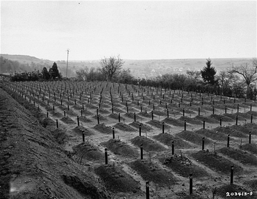 Cemetery at Hadamar where victims of euthanasia killing at Hadamar were buried. This photograph was taken toward the end of the war. Hadamar, Germany, April 1945.