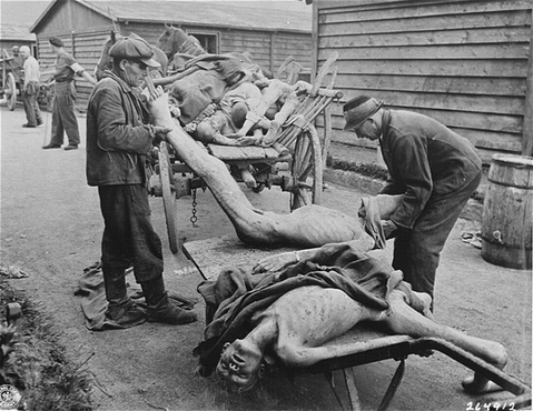 Victims of starvation are removed after US troops liberated Gusen, a subcamp of the Mauthausen concentration camp. Austria, May 12, 1945.