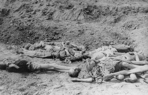 Corpses in a mass grave in Langenstein. Germany, April 17, 1945.