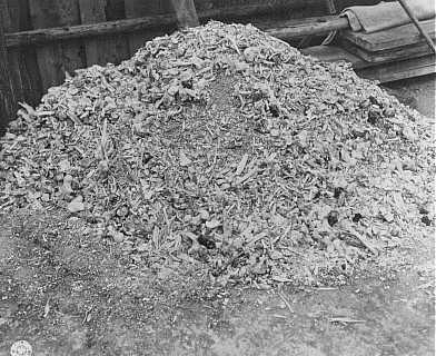 Uma das muitas pilhas de cinzas e ossos encontradas pelos soldados dos Estados Unidos no campo de concentração de Buchenwald. Alemanha, 14 de abril de 1945.