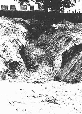 A mass grave dug by Jewish forced laborers for the bodies of individuals murdered by the NKVD in Lvov prisons. The NKVD (Soviet secret police) murdered thousands of Ukrainian nationalists, as well as some Jews and Poles, before retreating from the Nazi invasion. The Germans and their Ukrainian collaborators then used the massacre as a pretext for anti-Jewish pogroms, claiming that the Jews had helped the secret police. Lvov, Poland, July 3, 1941.