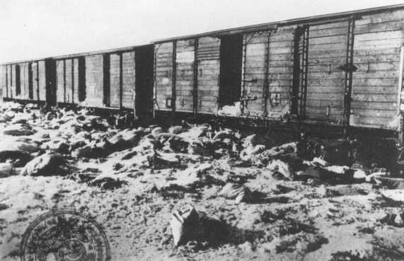 Rail cars, discovered by Soviet forces, containing bundles to be shipped to Germany. Auschwitz, Poland, after January 27, 1945.