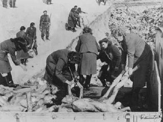 Un soldat britannique surveille des gardiennes SS forcées...
