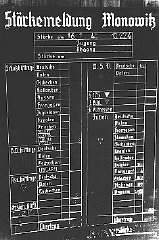 Chart indicating the workforce of the Auschwitz-Monowitz camp by category and nationality of inmates.