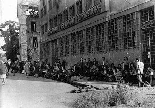 Chegada de sobreviventes judeus poloneses em Viena...