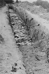 A mass grave at the Mauthausen concentration camp.