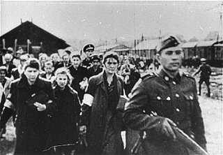 Jews under guard during deportation from the Warsaw...