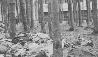 Corpses of victims of the Gunskirchen subcamp of the...