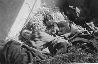 Survivors in a barracks at the Wöbbelin concentration...