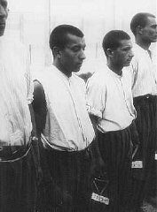 Romani (Gypsy) prisoners line up for roll call in the Dachau concentration camp.
