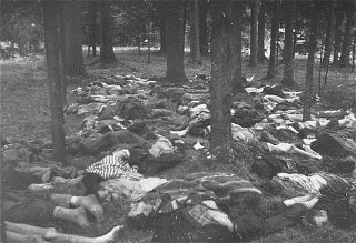 Corpses of prisoners killed in the Gunskirchen camp...