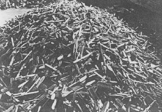 Escovas de cabelo das vítimas, encontradas logo após...