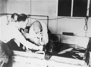 A victim of a Nazi medical experiment is immersed in...
