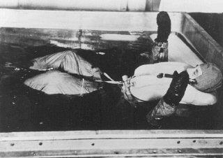 Une victime des expériences médicales nazies est plongée...