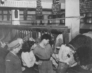 An agricultural training farm to prepare Jewish refugees...