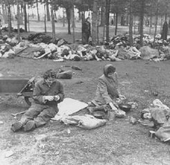 Soon after liberation, women camp survivors prepare food near piles of dead bodies.