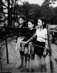 Jewish children, forcibly removed by British soldiers...
