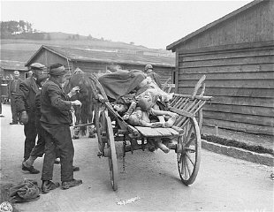 Civilians load corpses into wagons in preparation for...