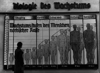 The Nazis used public displays to spread their ideas of race.