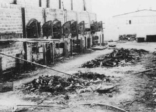 Charred remains of corpses near crematoria in the Majdanek...