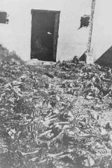 Remains of inmates in front of a crematorium at the Majdanek camp. Poland, after July 22, 1944.