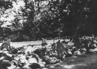 Soldados de uma unidade móvel de extermínio vasculham pertences dos judeus massacrados em Babi Yar