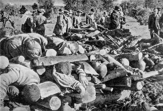 Corpses of inmates from Klooga concentration camp stacked...