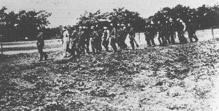 Soldados alemanes llevan rehenes polacos con los ojos...