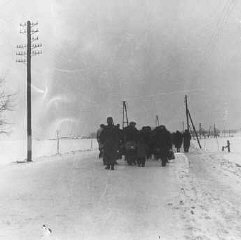 A transport of Jewish prisoners marches through the...