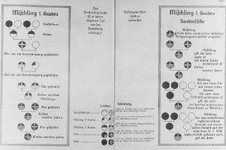 Nazi racial charts. Germany, between 1935 and 1945....